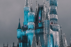 Wallpaper-TicoPortraits-16x9-MagicKingdom-4438